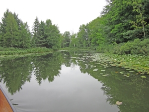 In the channel between Upper Eau Claire and Birch Lake