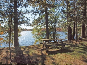 93-acre clear Beauregard Lake